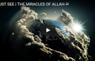 MUST SEE | THE MIRACLES OF ALLAH الله